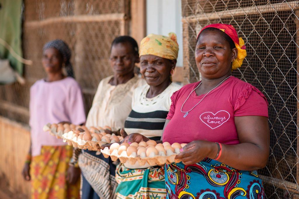 Poultry Farm, Mozambique